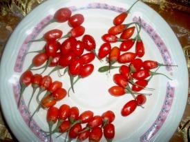 goji φρούτo